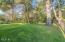 49505 Proposal Rock Loop, Neskowin, OR 97149 - Spacious Yard