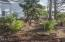 856 SW 9th St, Lincoln City, OR 97367 - Pocket Park - View 2