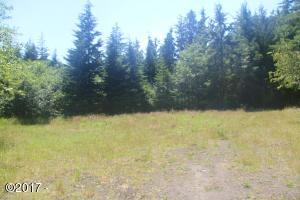 TL 1300 Wakonda Beach Rd, Waldport, OR 97394 - Lot 1300