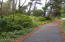10896 NW Pacific Coast Hwy, Seal Rock, OR 97376 - Paved driveway