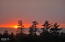 450 NE 70th Pl, Newport, OR 97365 - sunset with trees
