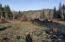 TL 702 Hamer, Siletz, OR 97380 - Mountain Views