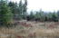 TL 702 Hamer, Siletz, OR 97380 - Meadow