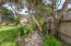 5755 Guardenia Ave, Pacific City, OR 97135 - Back Yard Area