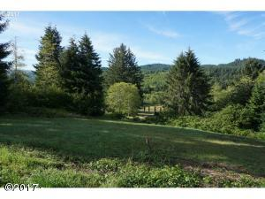 T/L1800 N Toad Hill Ct, Otis, OR 97368 - Lot View