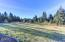 543 N Bayview Ct, Waldport, OR 97498 - Pasture