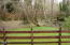2545 NE Big Creek Rd, Newport, OR 97365 - DSC09668