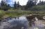 01100 NW Sarkisian Dr, Seal Rock, OR 97376 - Pond