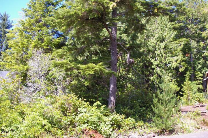 LOT 184 Gull Station, Depoe Bay, OR 97341 - Large Little Whale Cove Lot