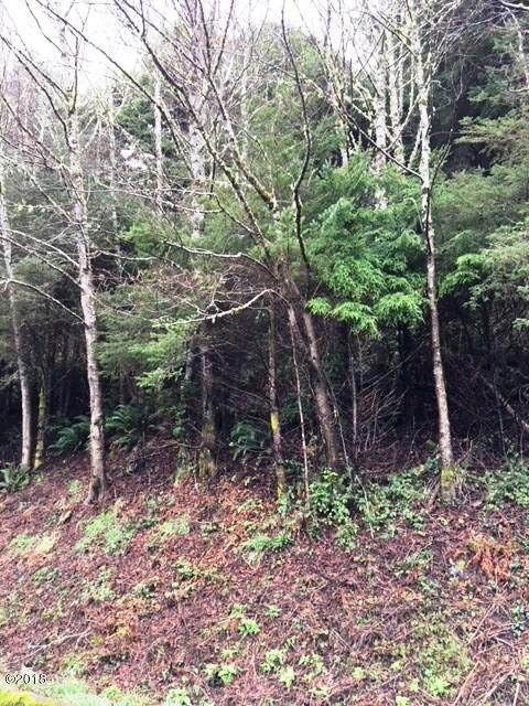 LOT 9 Sea Crest Drive, Otter Rock, OR 97369 - TL 7500.5