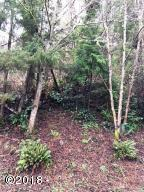 LOT 5 Sea Crest Drive, Otter Rock, OR 97369 - Street View