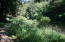 271 Combs Circle, Yachats, OR 97498 - Peaceful meandering paths