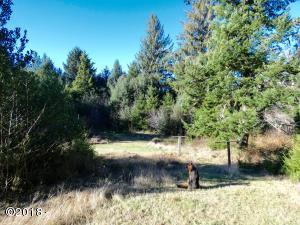 541 N Bayview Ct, Waldport, OR 97394 - Upper Field