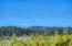 0 Merten Drive, Waldport, OR 97394 - North View