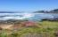 472 E 3rd St, Yachats, OR 97498 - 20170604_124401-7