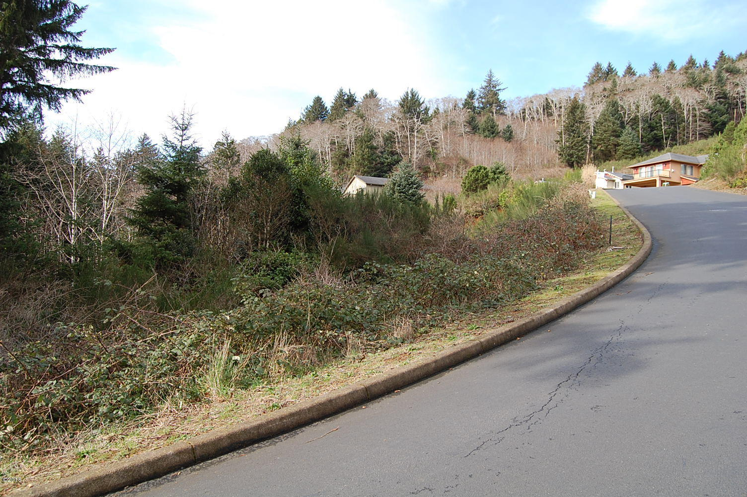 100 BLK NE Spring Ave, Depoe Bay, OR 97341 - From street looking north