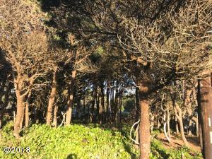 TL 5000 SW Marine View St, South Beach, OR 97366 - Wooded Lot