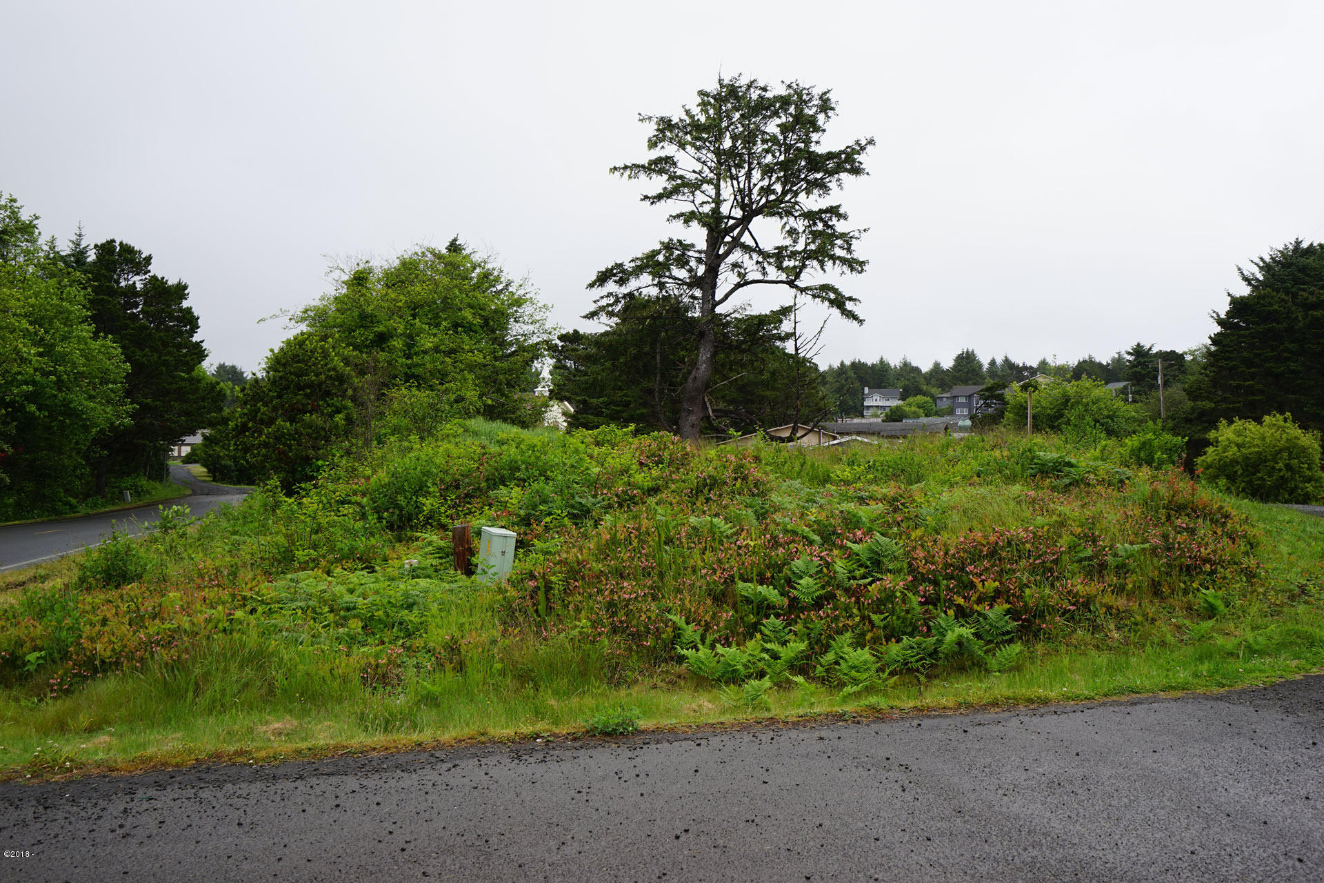 1106/05 SW Tara Ln, Waldport, OR 97394 - Lot View 1