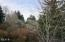 2280 NE Surf Avenue, Lincoln City, OR 97367 - Forest View From Deck