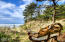 5822 NW Pacific Coast Hwy, Seal Rock, OR 97376 - Handmade bench to view ocean