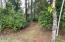 1730 SE Keiski Ln, Waldport, OR 97394 - Woodsy