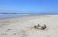 1202 NW Pacific Way, Waldport, OR 97394 - Sand Castle