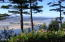 939 NW Highland Dr, Waldport, OR 97394 - Sunny afternoon