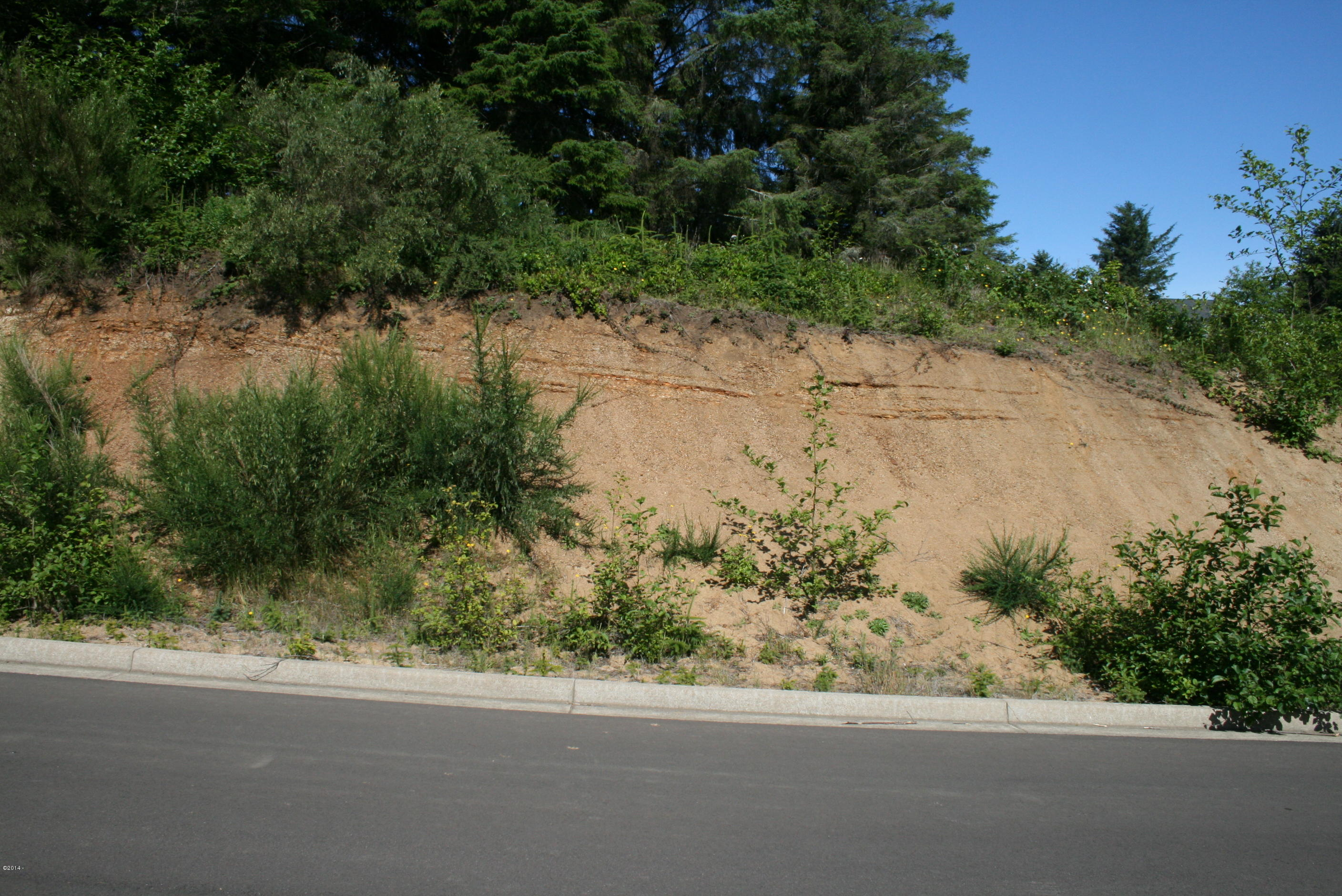 LOT 95 NE Wave Lane, Lincoln City, OR 97367 - Front of Lot