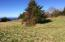 LOT 2101 Horizon Hill Rd, Yachats, OR 97498 - Horizon Hill lot 2101_SE looking to NW