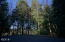 509 Beaver Pond Ln, Gleneden Beach, OR 97388 - Lot: View to West