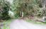 677 Little Switzerland Rd, Tidewater, OR 97390 - Driveway access
