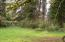 24254 Siletz Hwy, Siletz, OR 97380 - Trees