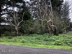 501 Overlook Dr, Yachats, OR 97498 - From Street