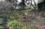 501 Overlook Dr, Yachats, OR 97498 - By creek