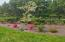 220 SW 60th Loop, South Beach, OR 97366 - Flowering shrubs and trees