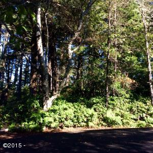LOT 17 SW Walking Wood, Depoe Bay, OR 97341 - Little Whale Cove Lot