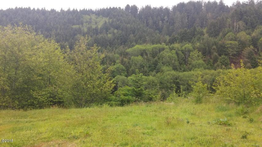 TL 210 South Beach Road, Neskowin, OR 97149 - Almost 3 acres in Neskowin