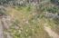 VL1915 Estuary Ln., Cloverdale, OR 97112 - DJI_00671