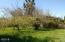 511 SE Moffitt Rd, Waldport, OR 97394 - Back yard