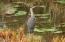 16857 Siletz Hwy, Siletz, OR 97380 - Blue Heron