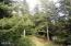 1905 NW Pine Crest Way, Waldport, OR 97394 - Beautiful Park like setting