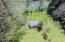 1340 Logsden Rd, Siletz, OR 97380 - Greenhouse & Garden
