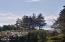 1905 NW Pine Crest Way, Waldport, OR 97394 - View from outside front yard