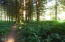 3329 E Five Rivers Rd, Tidewater, OR 97390 - Timber 3