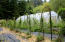 1266 N Yachats River Rd, Yachats, OR 97498 - berries_greenhouse2