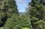 455 NE Waldport Heights Dr, Waldport, OR 97394 - river through the trees