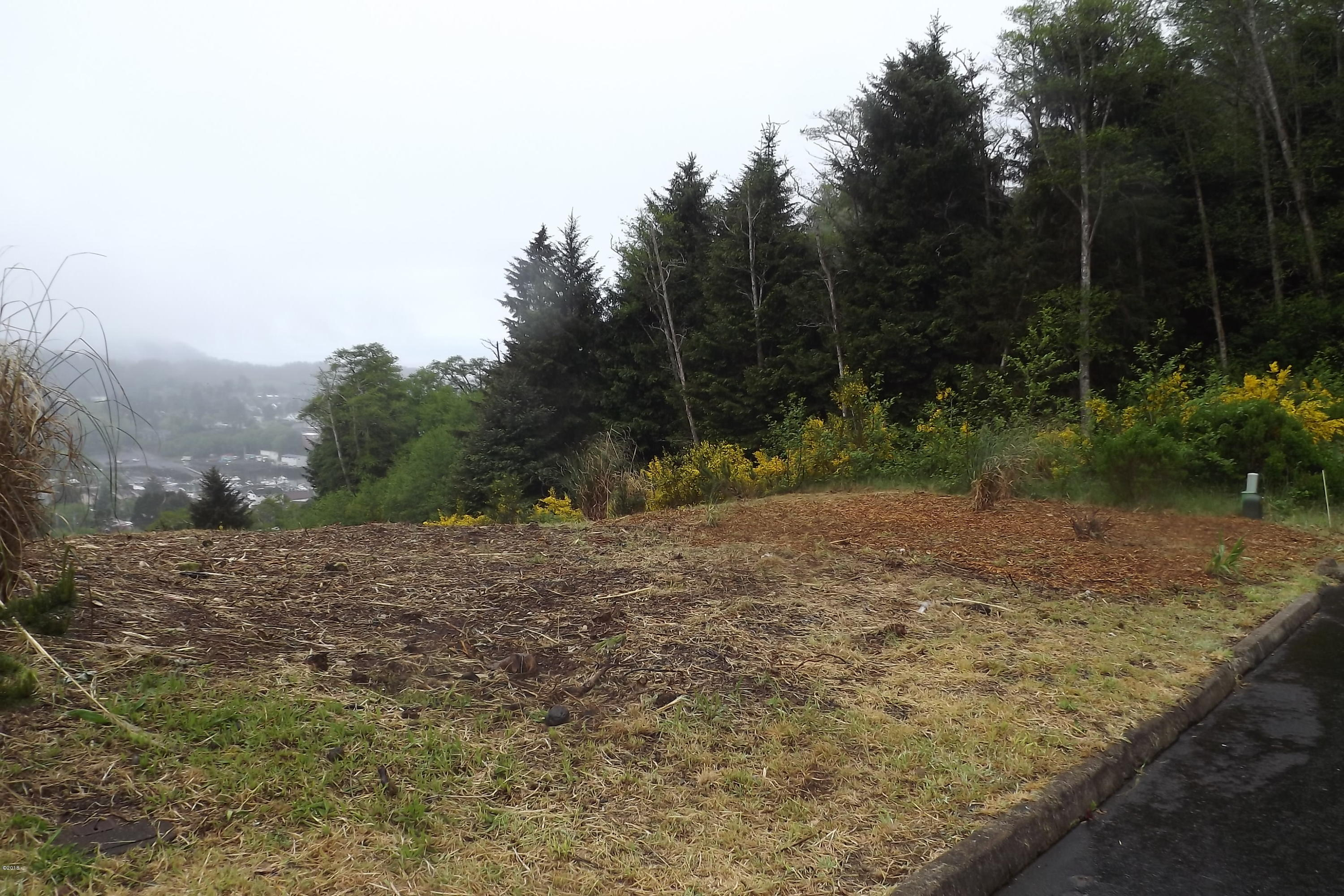 LOT 44 Spring St, Depoe Bay, OR 97341 - Lot from street