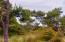 3410 NW Hidden Lake Dr, Waldport, OR 97394 - View through Trees