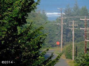 1201 NE Eastline Rd, Yachats, OR 97498 - View Down Star Creek Rd.