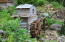 4747 Salmon River Hwy, Otis, OR 97368 - Water Feature